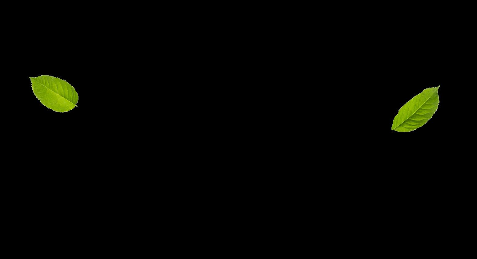 azena-slide-3