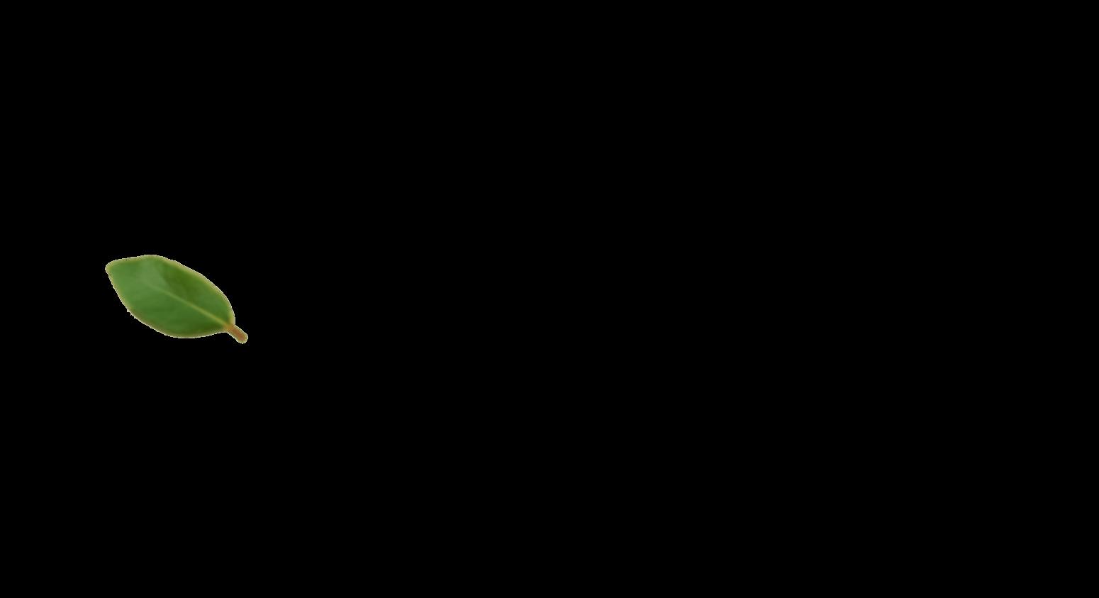 azena-slide-1